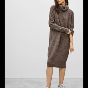 Aritzia Community Poeta turtleneck sweater dress